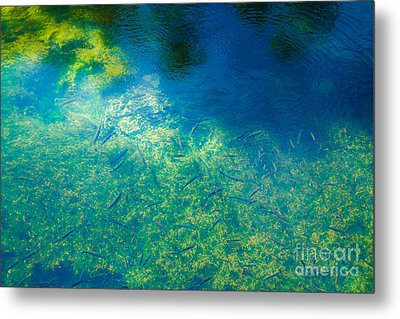 Fountain's Depth And Reflection Metal Print by Nabucodonosor Perez