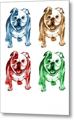 Four Bulldogs Metal Print by Barbara Marcus
