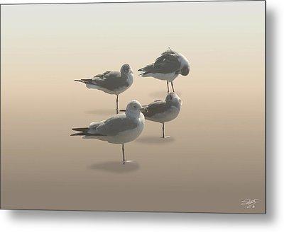 Four Seagulls On Sand Key Metal Print by IM Spadecaller