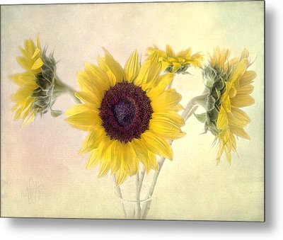 Metal Print featuring the photograph Hello Sunshine by Louise Kumpf