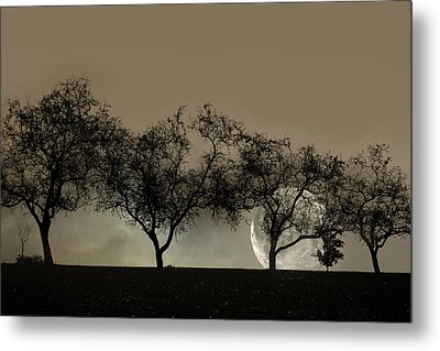 Four Trees And A Moon Metal Print