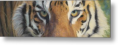Forever Wild Metal Print by Lucie Bilodeau