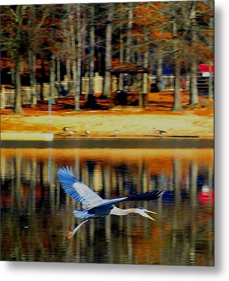 Fowl In Flight Metal Print