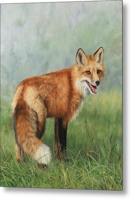 Fox  Metal Print by David Stribbling