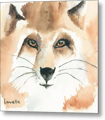 Fox Study 2 Metal Print by Kimberly Lavelle