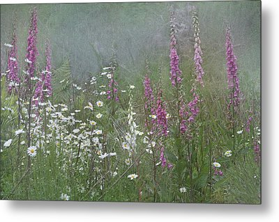 Foxgloves And Daisies Metal Print by Angie Vogel