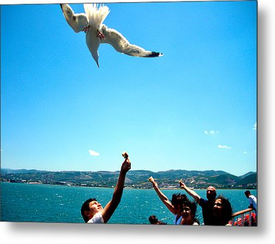 Metal Print featuring the photograph Foxtrot For Food by Zafer Gurel