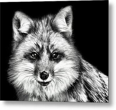 Foxtrot Metal Print by Steven Richardson