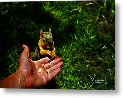Fractal - Feeding My Friend - Robbie The Squirrel Metal Print by James Ahn