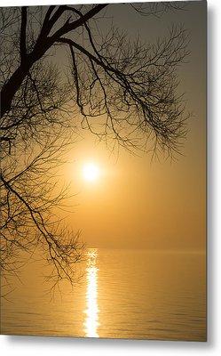 Framing The Golden Sun Metal Print by Georgia Mizuleva