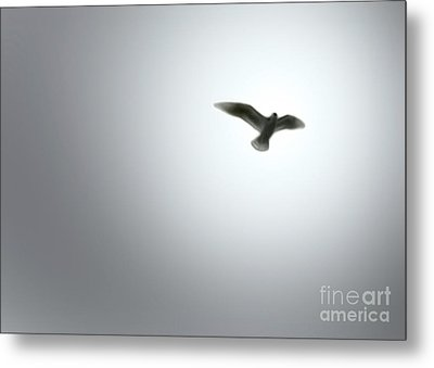 Metal Print featuring the painting Free Bird by Gregory Dyer