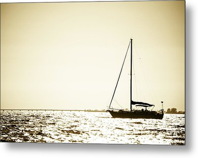 Freedom Metal Print by VistoOnce Photography