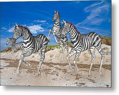 Freedom Fun Forever Metal Print by Betsy Knapp