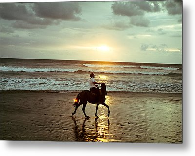 Metal Print featuring the photograph Freedom by Lana Enderle