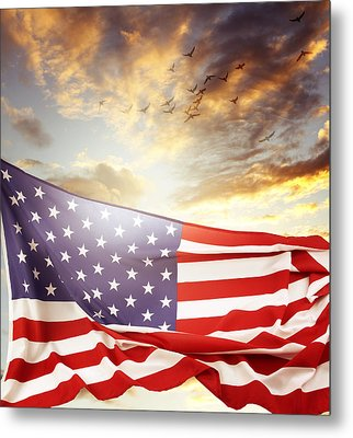 Freedom Metal Print by Les Cunliffe