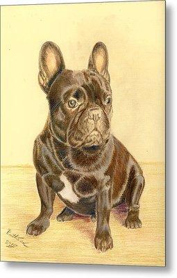 French Bulldog Metal Print