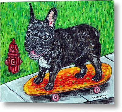 French Bulldog Skateboarding Metal Print by Jay  Schmetz