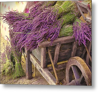 French Lavender Cart Metal Print by Phyllis Peterson