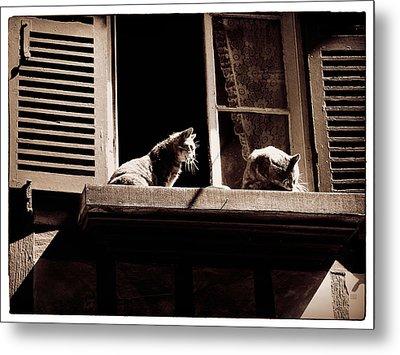 French Windowsill Cats In The Sun Metal Print