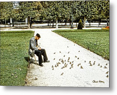 Frenchman Feeding The Sparrows Metal Print by Chuck Staley