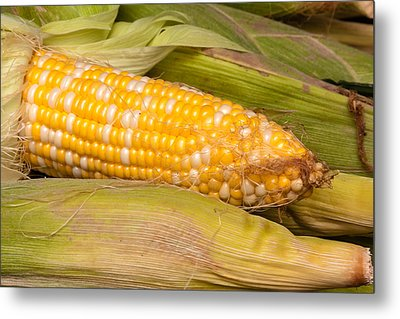 Fresh Corn At Farmers Market Metal Print by Teri Virbickis