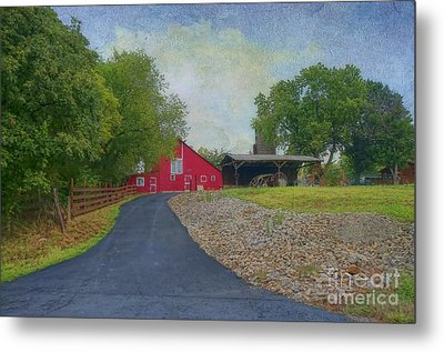 Metal Print featuring the photograph Fresh Country Charm by Liane Wright