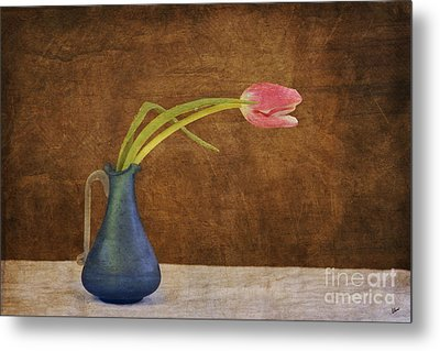 Fresh From The Garden Metal Print by Alana Ranney
