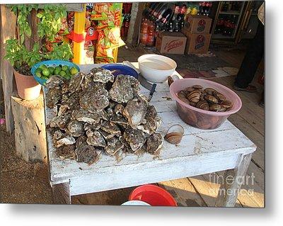 Fresh Oysters Barre De Navidad Metal Print by Linda Queally