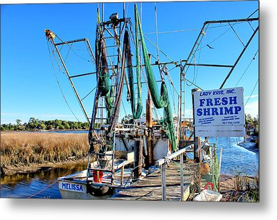 Fresh Shrimp Metal Print by Lynn Jordan