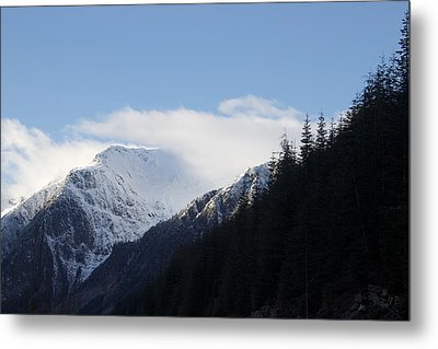 Fresh Snow Metal Print by Sylvia Hart