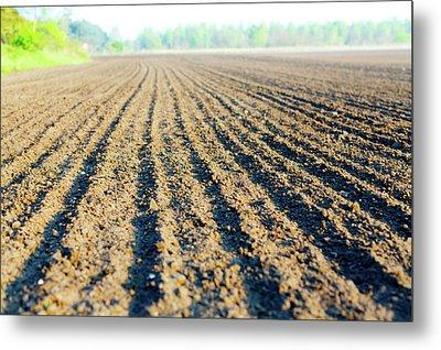Freshly Ploughed Field Metal Print