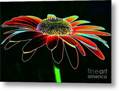 Friday Night Daisy Metal Print