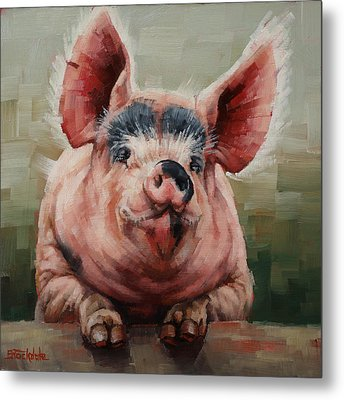 Friendly Pig Metal Print by Margaret Stockdale