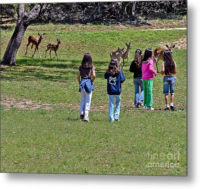 Friends Making Friends Metal Print by Bob and Nadine Johnston