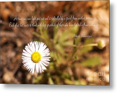 Friendship Metal Print by Barbara Shallue