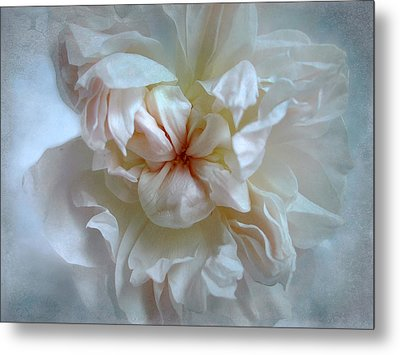 Metal Print featuring the photograph Friendship Is The Breathing Rose by Louise Kumpf