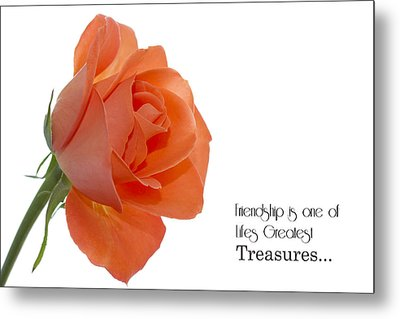 Metal Print featuring the photograph Friendship Treasures by Kim Andelkovic