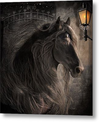 Friesian Glow Metal Print