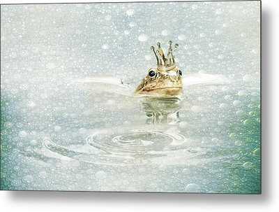 Frog Prince In The Rain Metal Print by Heike Hultsch