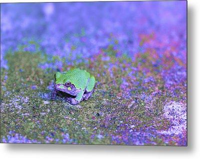Frogger Metal Print