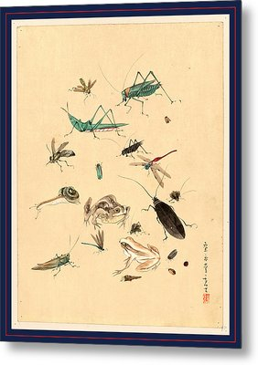 Frogs Snails And Insects, Including Grasshoppers Beetles Metal Print by Japanese School