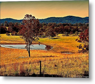 Metal Print featuring the photograph From A Distance by Wallaroo Images