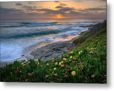 From Above Metal Print by Peter Tellone