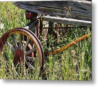 From Rust To Grass Metal Print