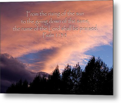 From The Rising Of The Sun Metal Print by Denise Beverly