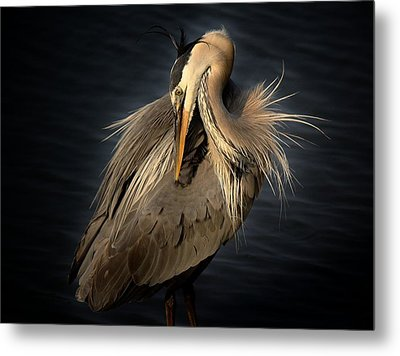 Front Cover Of The Grand Strand Magazine Metal Print by Paulette Thomas
