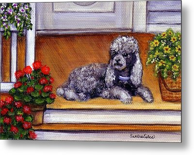 Metal Print featuring the painting Front Porch Poodle by Sandra Estes