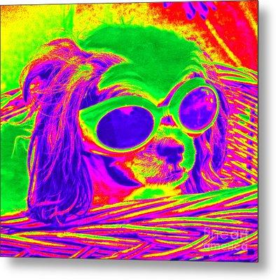 Front Seat Driver Pop Art - Puppy Mania Metal Print by Ella Kaye Dickey