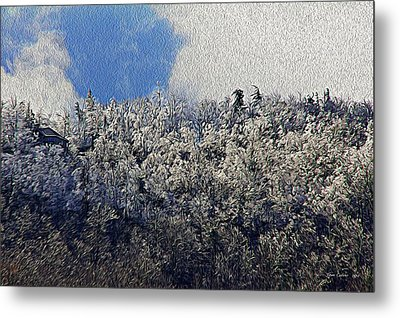 Frost Line 2 Metal Print by Tom Culver