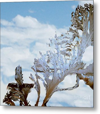 Frost On Glass See A Cross Metal Print by The Kepharts